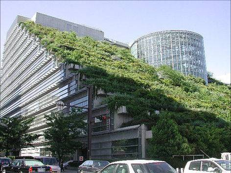 Example of a green roof