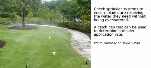 Check sprinkler systems to ensure plants are receiving the water they need without being overwatered.